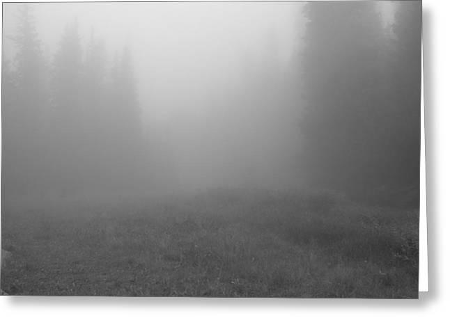 Fog In Tileston Meadow Greeting Card