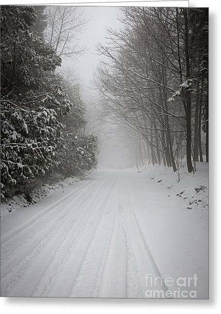 Foggy Winter Road Greeting Card by Elena Elisseeva