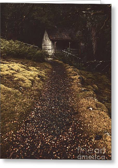 Forest Log Cabin Or Cottage With Leafy Autumn Path Greeting Card by Jorgo Photography - Wall Art Gallery