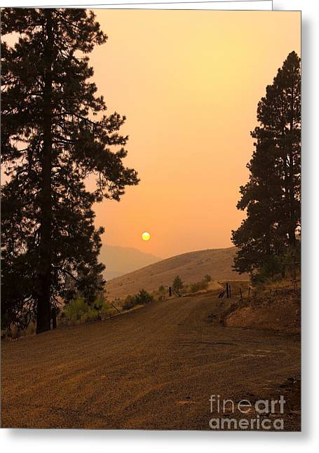 Framed Sunset Greeting Card by Robert Bales