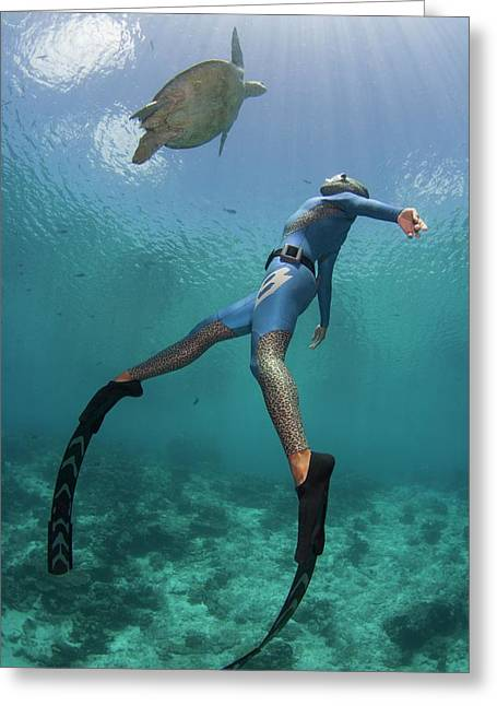 Free Diver With A Turtle Greeting Card by Scubazoo