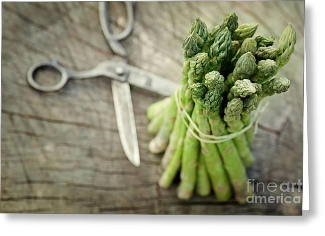 Freshly Harvested Asparagus Greeting Card by Mythja  Photography