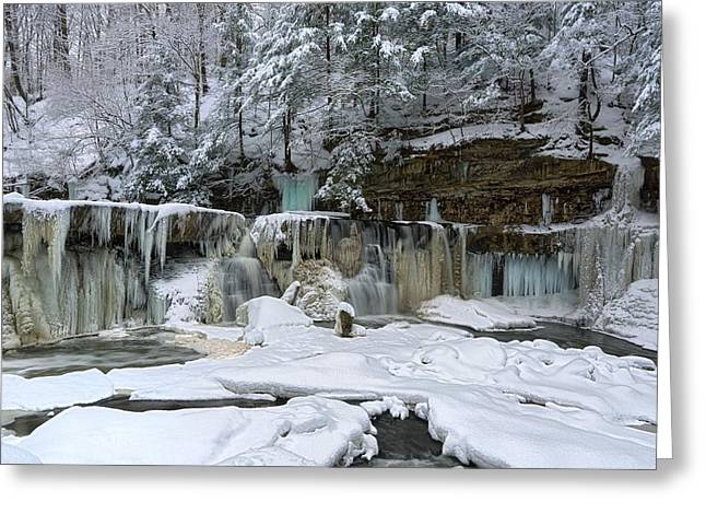 Frozen In Time Greeting Card by Daniel Behm