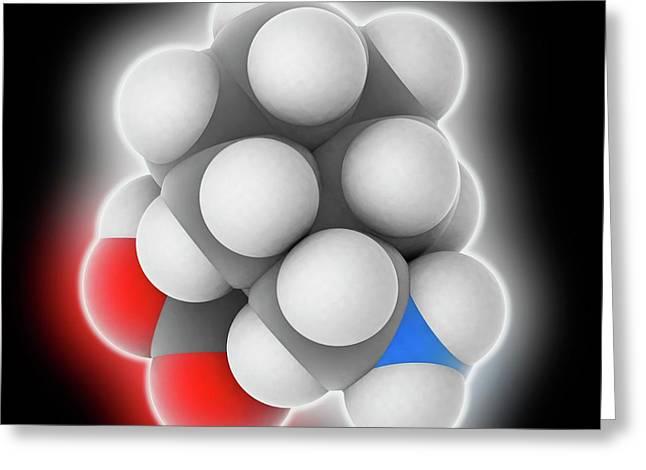 Gabapentin Drug Molecule Greeting Card by Laguna Design