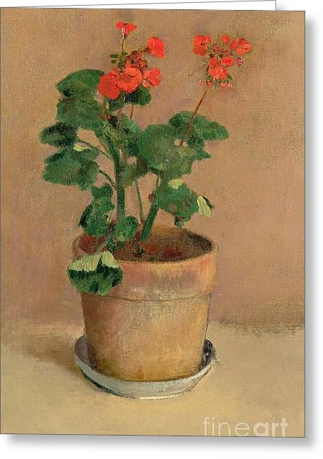Geraniums In A Pot Greeting Card by Odilon Redon