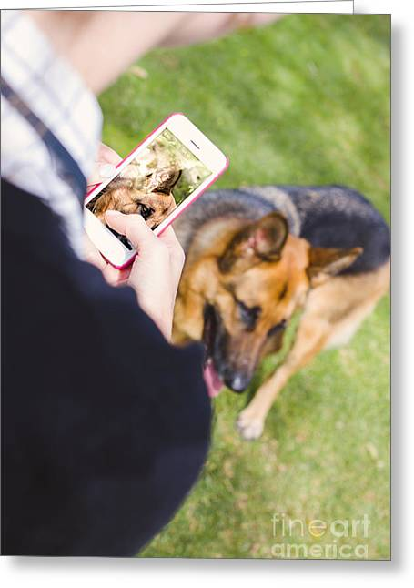 Girl Taking Photo Of Dog With Smart Mobile Phone Greeting Card by Jorgo Photography - Wall Art Gallery