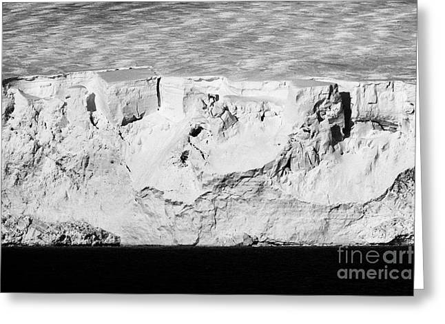 glacier face with blue and white ice arctowski peninsula Antarctica Greeting Card by Joe Fox