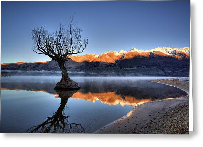 Glenorchy Greeting Card by Brad Grove