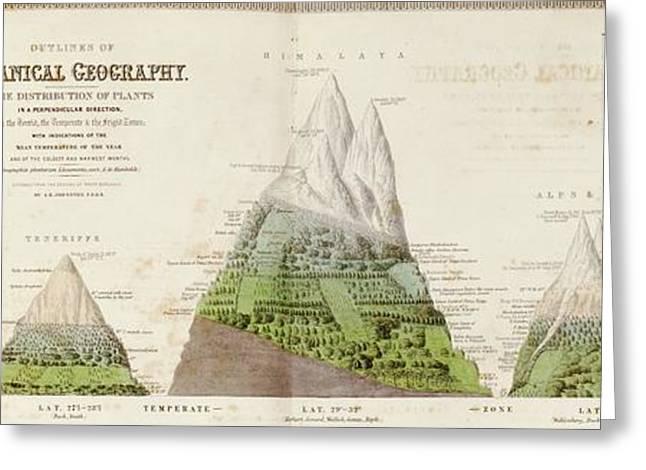 Global Botanical Geography Greeting Card
