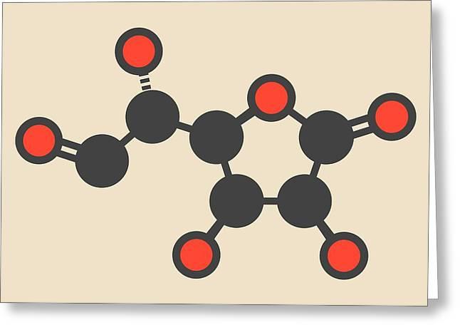 Glucuronolactone Molecule Greeting Card by Molekuul