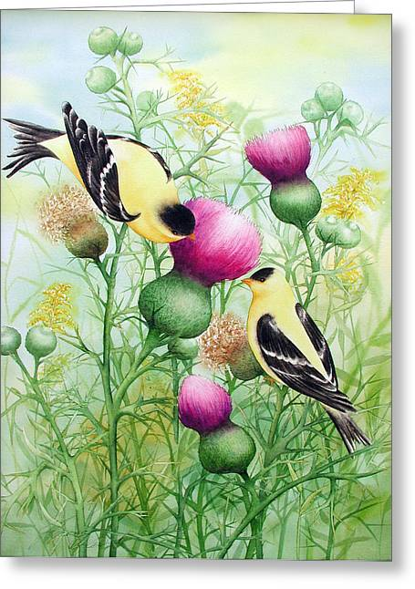 Gold Finches On Thistles Greeting Card