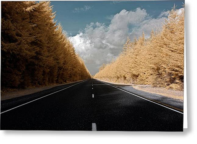 Greeting Card featuring the photograph Golden Road by David Stine