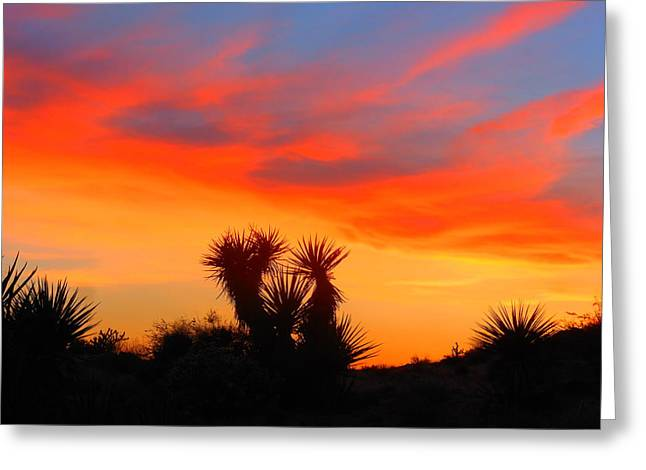 Golden Valley Sunset Greeting Card