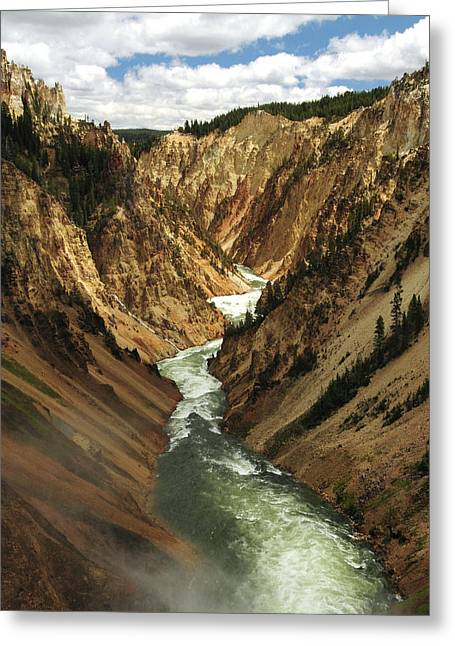 Grand Canyon Of The Yellowstone Greeting Card by Michel Hersen
