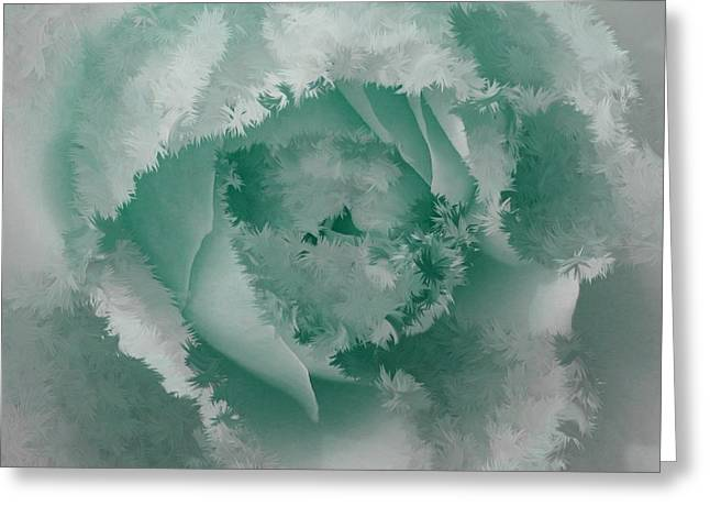 Granny's Rose Teal Greeting Card by Holley Jacobs