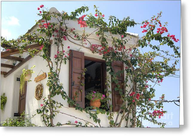 Greek Charm Greeting Card by David Birchall