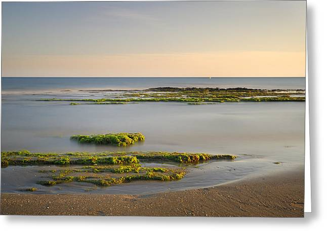 Green Coast Greeting Card by Guido Montanes Castillo