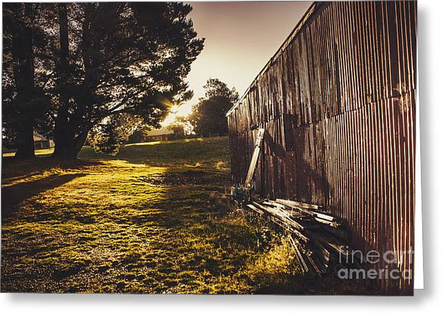 Green Farm Paddock Landscape. Outback Australia Greeting Card
