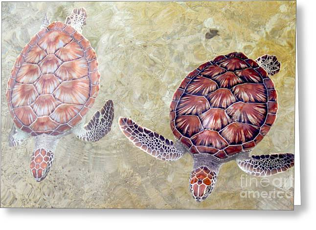 Green Turtles Greeting Card by Carey Chen
