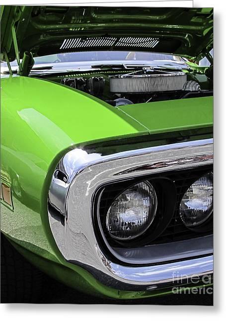 Green With Envy Greeting Card by Arlene Carmel