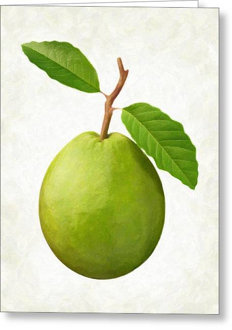 Guava Greeting Card by Danny Smythe