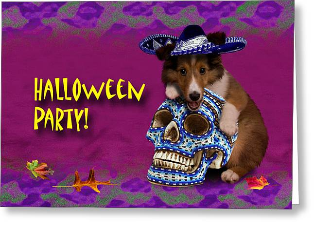 Halloween Party Sheltie Puppy Greeting Card by Jeanette K