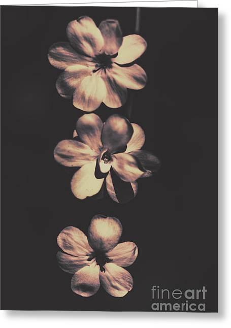 Hanging Vine Flowers In Aged Orange Summer Greeting Card