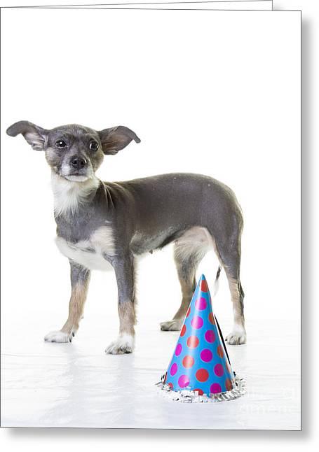 Happy Birthday Greeting Card by Edward Fielding
