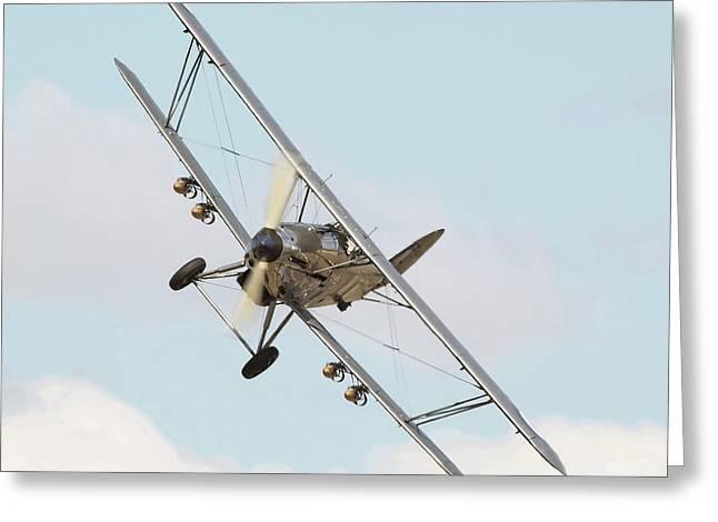 Hawker Hind - Comin' At Ya Greeting Card