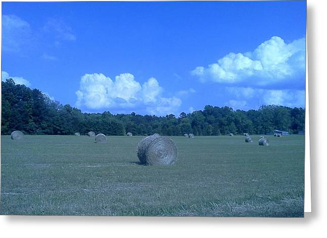 Haystacks Greeting Card by Stacy C Bottoms