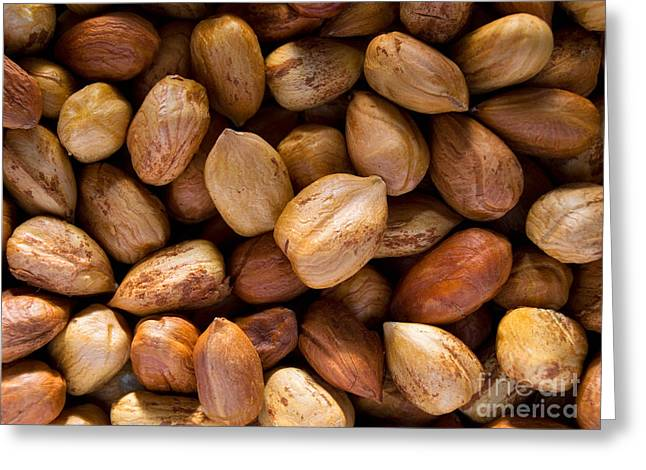 Hazelnuts Greeting Card by Sinisa Botas