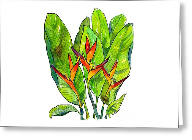Heliconia Greeting Card by Diane Thornton