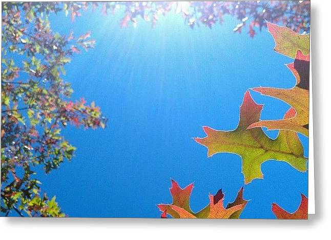 Hello Autumn Greeting Card by CML Brown