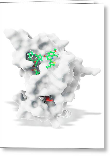 Hepatitis C Drug Bound To Enzyme Greeting Card by Ramon Andrade 3dciencia