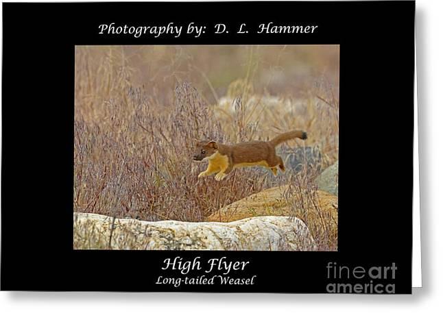 High Flyer Greeting Card by Dennis Hammer