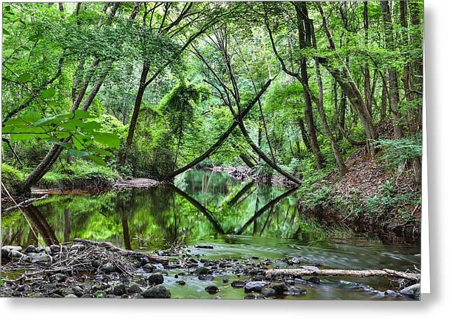 Hitchcock Creek Greeting Card