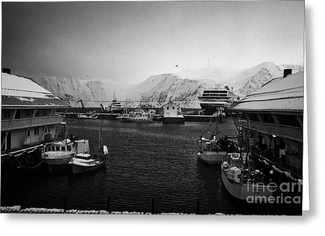 Honningsvag Harbour Finnmark Norway Europe Greeting Card