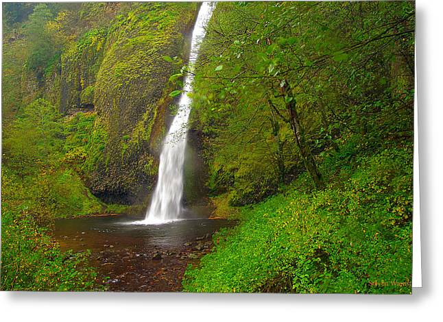 Horsetail Falls Greeting Card by Steve Warnstaff