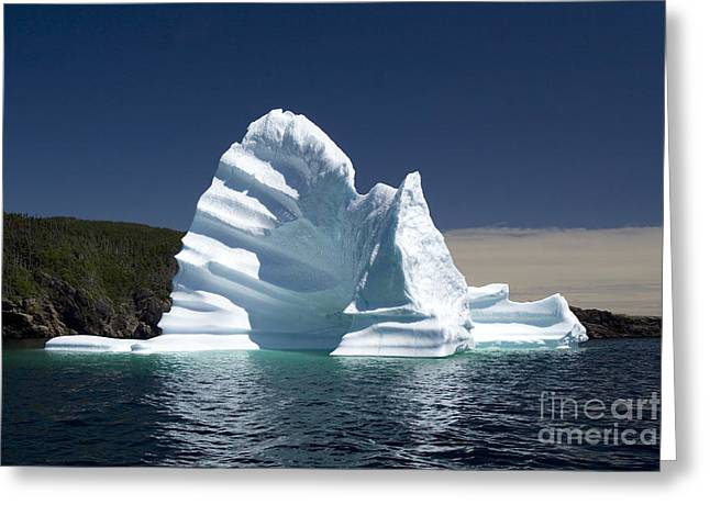Greeting Card featuring the photograph Iceberg by Liz Leyden
