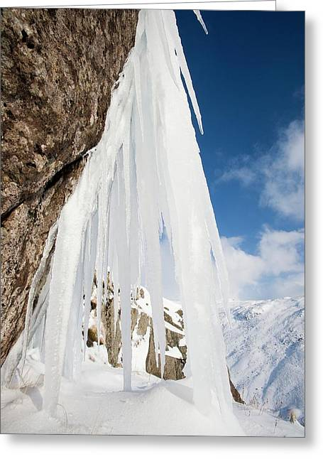 Icefall Greeting Card by Ashley Cooper