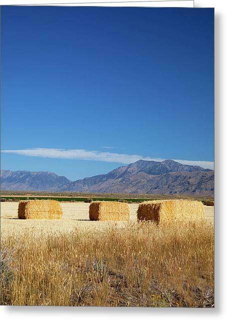 Idaho, Butte County, Hay Bales Greeting Card
