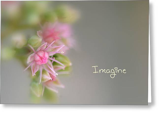 Imagine Now Greeting Card