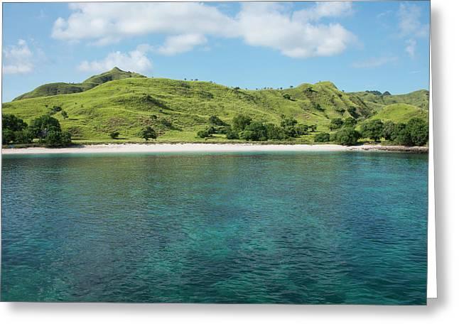 Indonesia, Komodo Island Greeting Card by Cindy Miller Hopkins