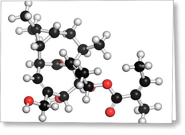 Ingenol Mebutate Actinic Keratosis Drug Greeting Card by Molekuul