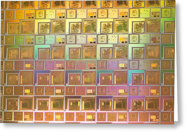 Integrated Circuits On Silicon Wafer Greeting Card by Science Source
