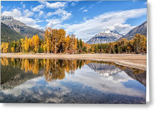 Into The Wild Greeting Card by Aaron Aldrich
