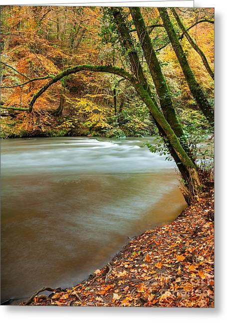 Irrel Falls Greeting Card
