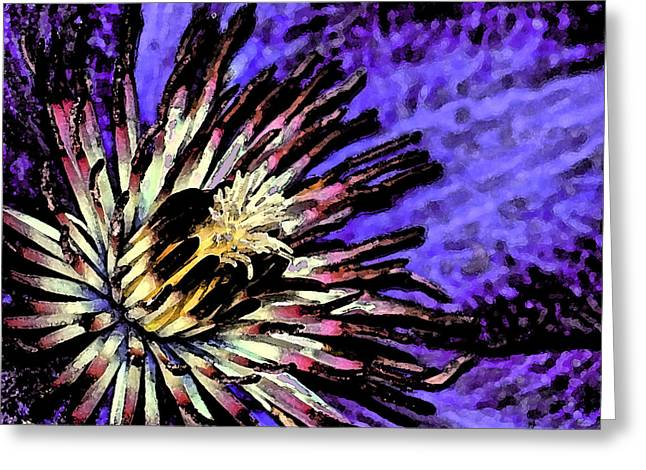 Jackmanii Clematis Greeting Card by Robert Culver