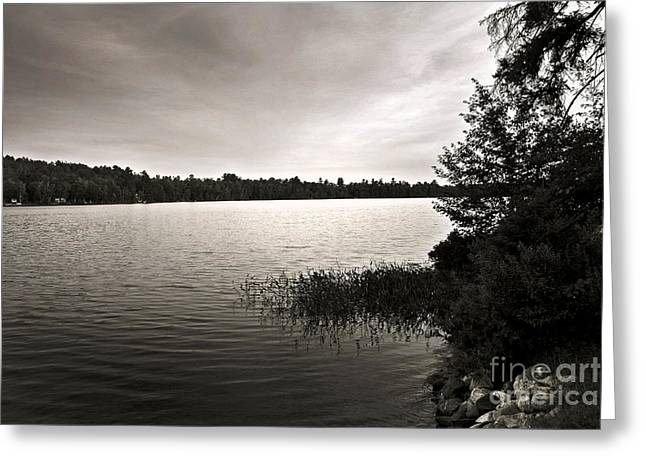 Greeting Card featuring the photograph Jacob Buck Pond by Paul Cammarata
