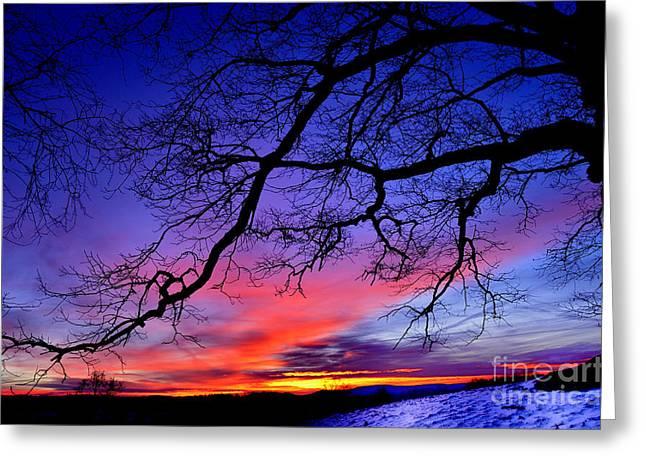 January Sunrise Greeting Card by Thomas R Fletcher